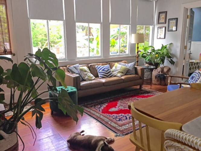 The Recorder - Northfield native rehabs New Orleans home, gets ...