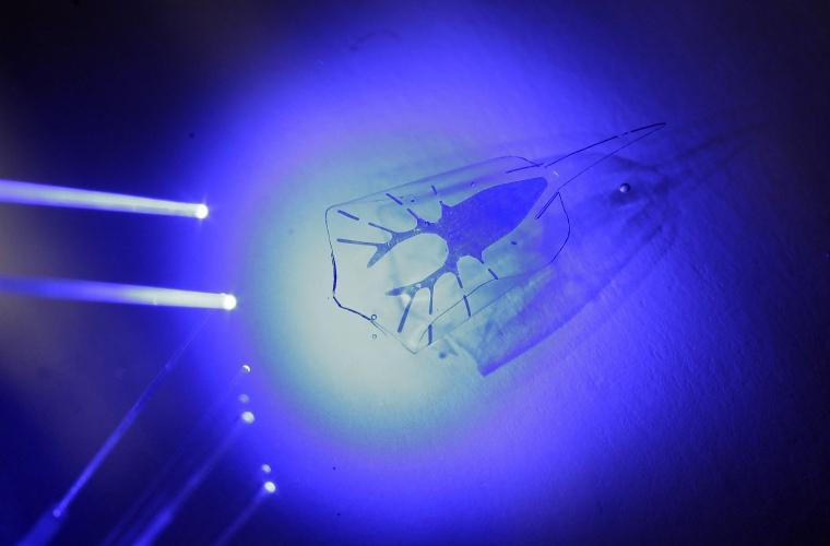 اسلاید های یک تحقیق جذاب وجدید بنام قلب مصنوعی بایو هیبرید