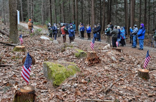 Stumps in Wendell State Forest inspire memorial service and next moves - The Recorder
