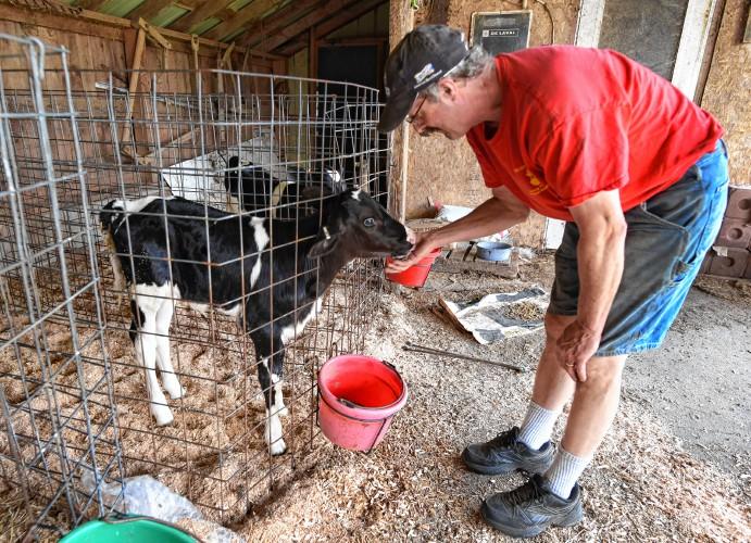 The Recorder - New film showcases 'forgotten' dairy farms