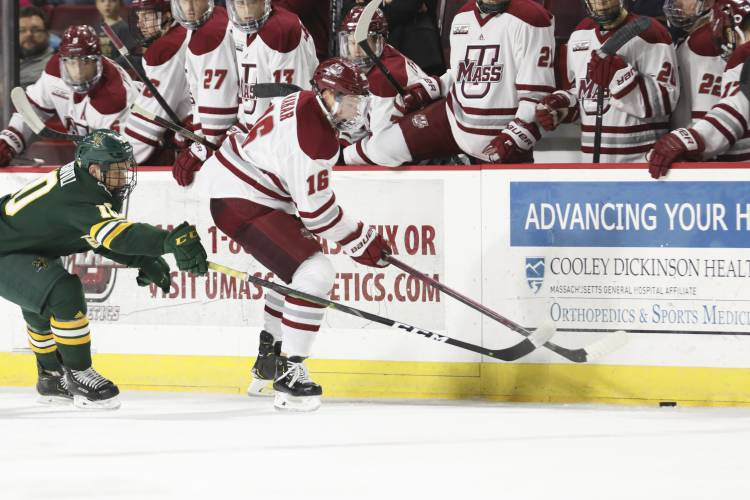 UMass Amherst defenseman Cale Makar (16) reaches for the puck with Vermont  forward Vlad Dzhioshvili (10) close behind during a NCAA hockey game e3aa28404